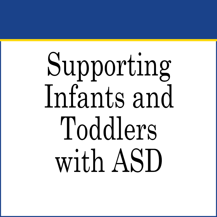 Early Intervention supporting toddlers with ASD link image